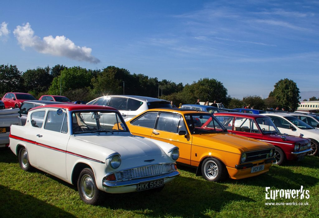 Fords at Cars and Coffee