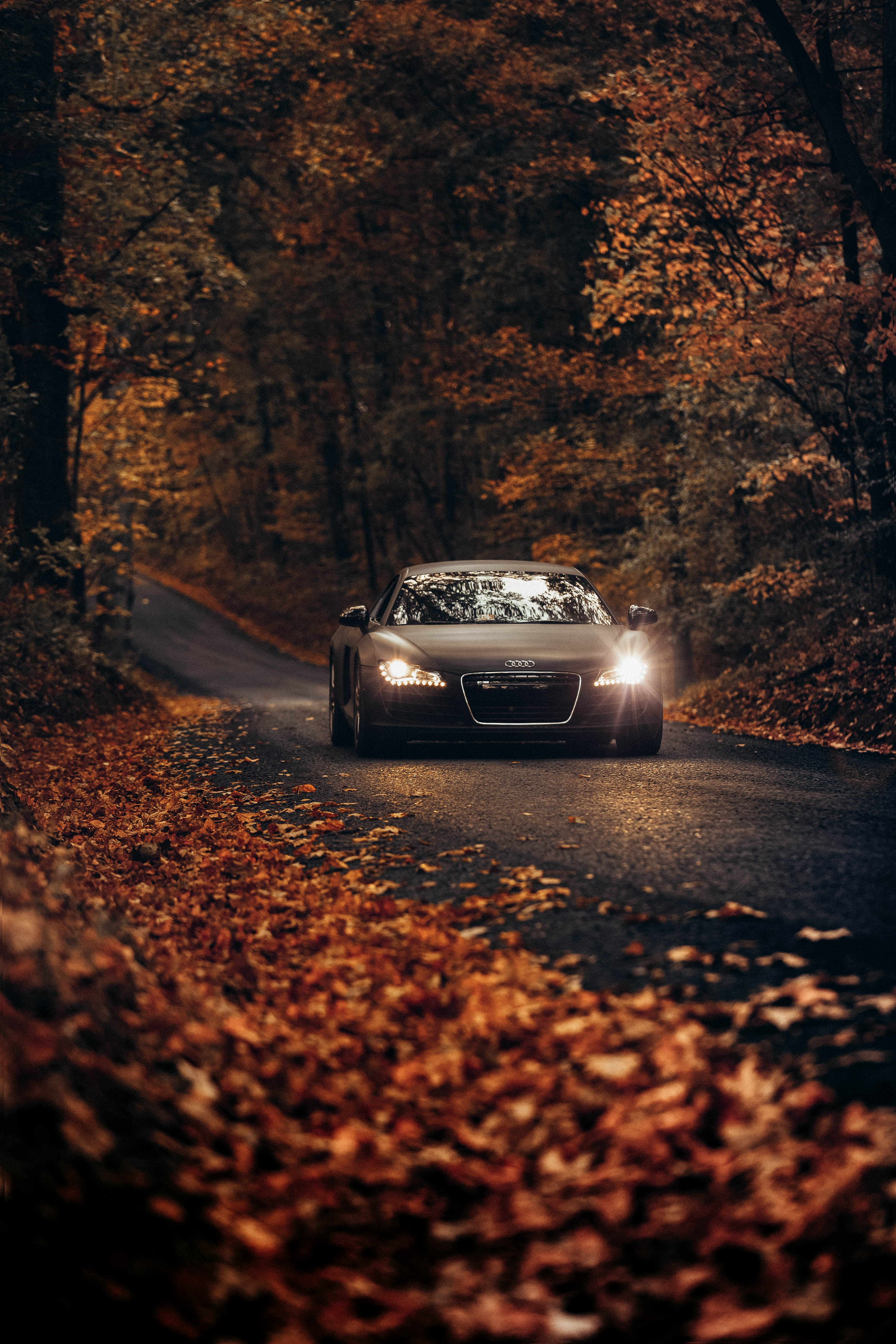 Autumn & Winter Driving. Head Light bulbs